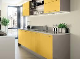 cuisiner le safran cuisine jaune safran cuisine cuisine jaune safran