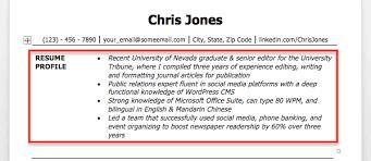 exles of resume resume profile exle fungram co