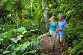 Garden Botanical National Tropical Botanical Garden Hawaii
