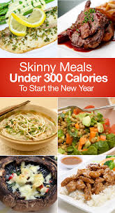 skinny meals under 300 calories to start the new year skinny