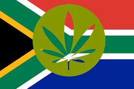 Dope American Flag Buy Cannabis Seeds In South Africa Dope Seeds Seedbank