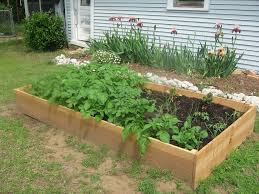 urban gardens articles gardening know how