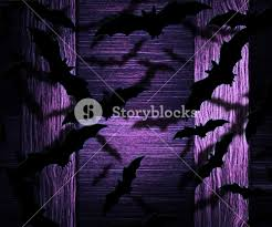 bats halloween violet background royalty free stock image