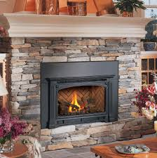 Gas Wood Burning Fireplace Insert by Gas Fireplace Inserts Avalon Dv Gas Insert Cambridge Face For
