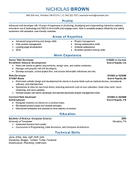 resume exles it professional best it web developer resume exle livecareer