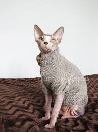 sweaters for cats sphynx clothes sphynx sweater cat clothes cat sweater