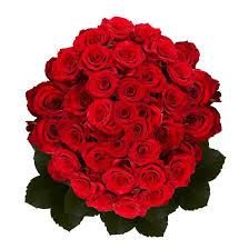 global roses top 10 best s day bouquets