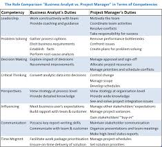 the role of business analyst in project management