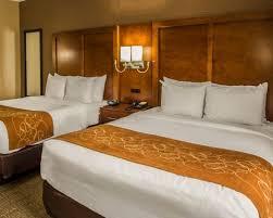 Comfort Inn Jersey City Standardroomsbedroom9 1 Jpg