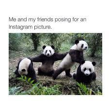 Funny Friend Meme - best friend memes popsugar tech