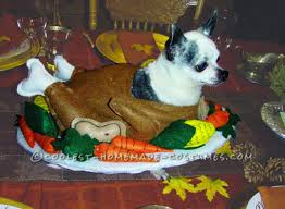 Halloween Animal Costumes by Funny Homemade Dog Costume Gobble Til You Wobble Homemade Dog