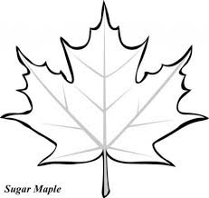 leaf printable coloring pages maple leaves leaves and coloring