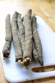 comment cuisiner les salsifis scorsonères et salsifis que faire avec les papilles estomaquées