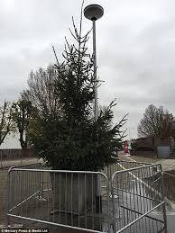 britain u0027s u0027worst christmas tree u0027 in brinnington is nicknamed u0027the