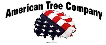 american tree company tree trimming services west branch ia