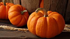 halloween pumpkin desktop wallpaper pumpkin wallpaper 25