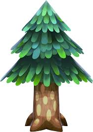 image cedar tree nl png animal crossing wiki fandom powered