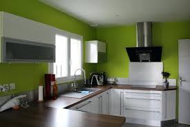 cuisine mur vert pomme cuisine ouverte avec muret photos de design d intérieur et