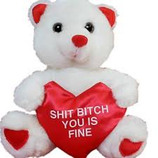 teddy valentines day valentines day teddy 8 mr
