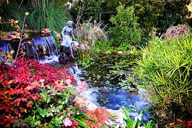 beautiful garden full of flowers and waterfall hd stock video clip