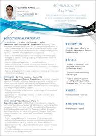 free executive resume templates cv resume template word for executive templates all best cv resume