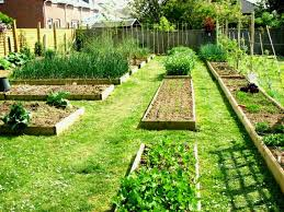 Design A Vegetable Garden Layout How To Design A Vegetable Garden Layout How To Design A Vegetable