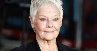 judi dench hairstyle front and back of head judy dench will play a fairy police officer in artemis fowl