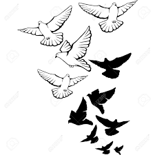 bird flying outline clipart collection