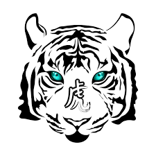 amazing blue eyed white tiger with hieroglyph