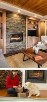pellet wood gas and coal stoves inserts and furnaces