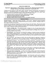 free sle resume templates resume sle consultant youth at risk research non profits