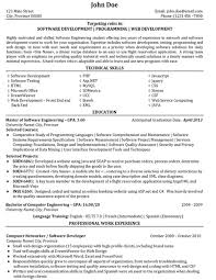 Sample Resume Computer Programmer Good It Resume Titles Thesis Youth And Governance Esl Personal