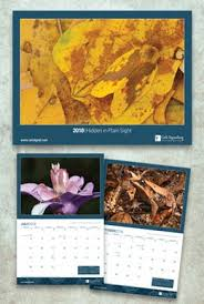 four 4 freebies 2018 calendar thanksgiving printable activity