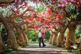 St Louis Botanical Garden Hours St Louis Botanical Gardens Engagement Niche Photography