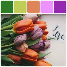 Home Decorating Paint Color Ideas by Love Inspired Tulips L Color Palette Design L Home Decor Paint