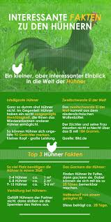 Landhausk Hen G Stig Online Kaufen Die Besten 25 Hühnerstall Kaufen Ideen Auf Pinterest Hühnerhaus