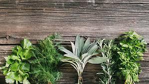comment utiliser le romarin en cuisine comment utiliser les herbes aromatiques cahier de cuisine