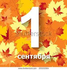 congratulatory cards vector illustrations back school congratulatory card stock vector