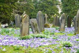 grave stones springtime churchyard and gravestones creative commons stock image