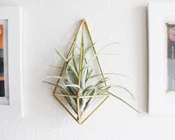 White Wall Planter by Wall Sconce Ideas Formidable White Wall Sconce Planters Classic
