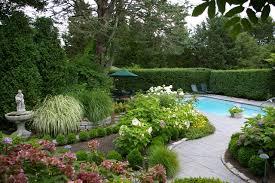 evergreen ornamental grasses houzz