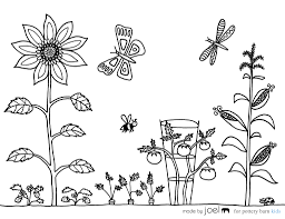 unthinkable garden coloring pages vegetable garden coloring page