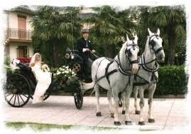 carrozze bianchi cavalli bianchi e carrozza per matrimonio a barcellona pozzo di