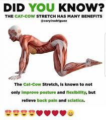 Back Pain Meme - 25 best memes about back pain meme back pain memes