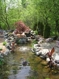 backyard ponds watergardens and waterfalls forever green img