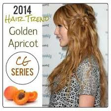 golden apricot hair color 11 best juliette images on pinterest hairstyle hair cut and