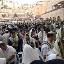 prayers for sukkot 291 best sukkot images on israel simchat torah and