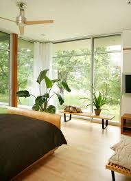 grünpflanzen im schlafzimmer zimmerpflanzen schlafzimmer nuhera
