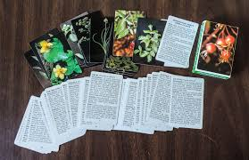 native american edible plants edible plants archives preparedness advicepreparedness advice
