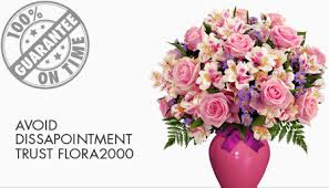 flowers delivery same day flower delivery sao luis same day florist delivery